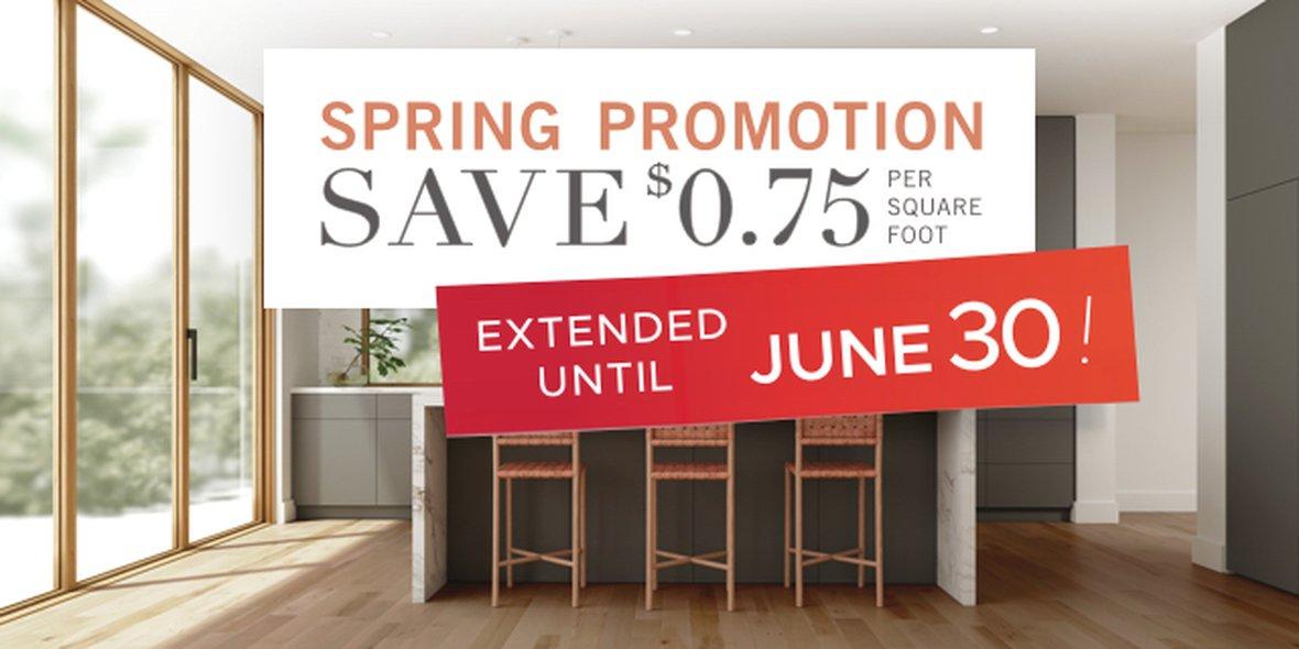 Spring Promotion 2020