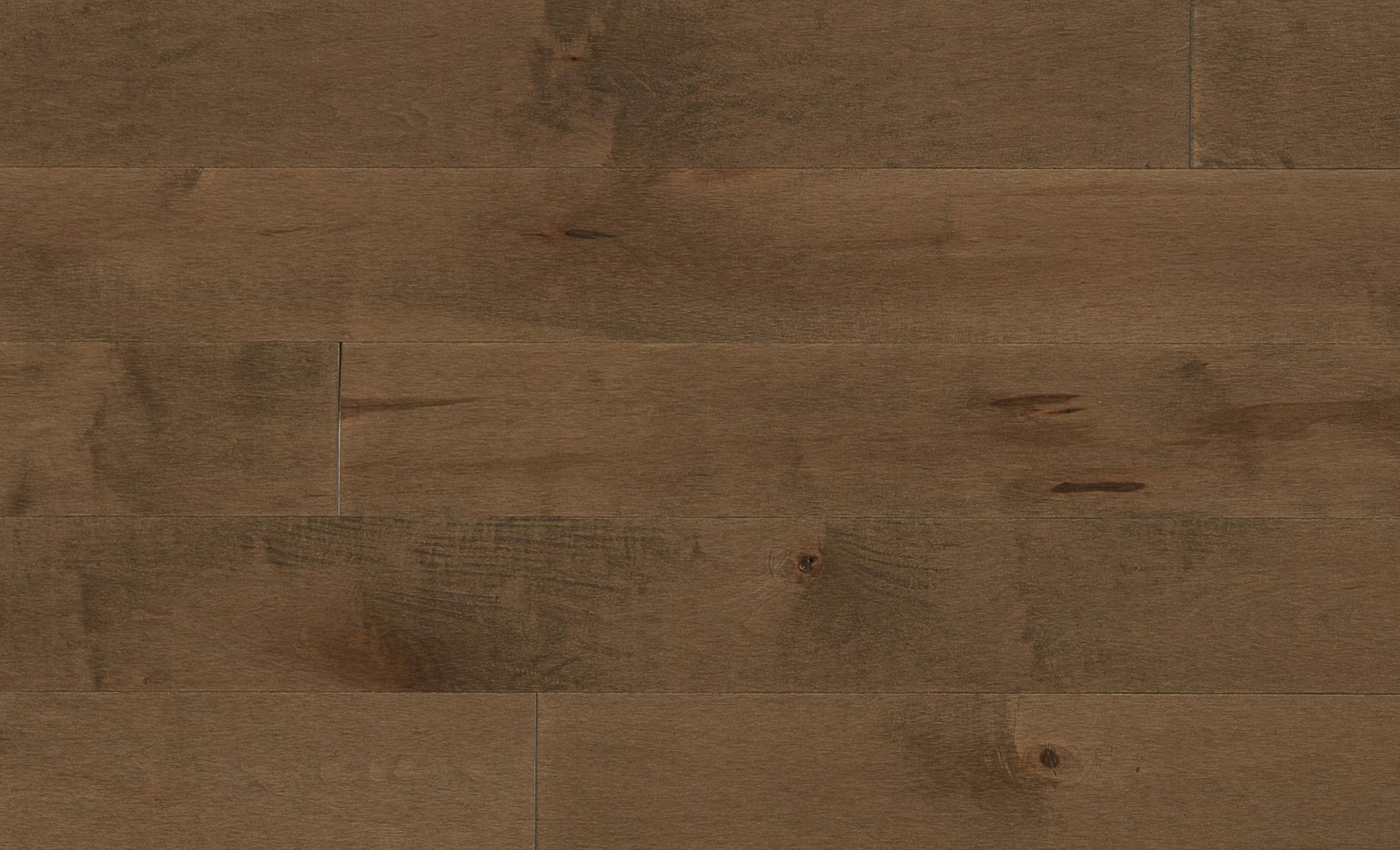 Hard Maple Arabica